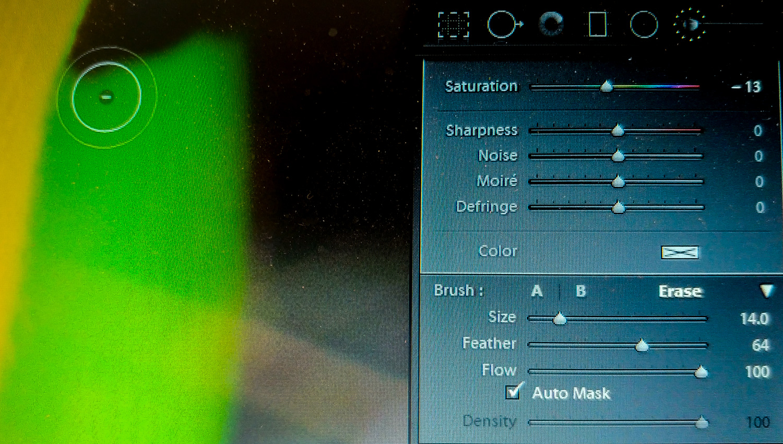 Using Lightroom Automask
