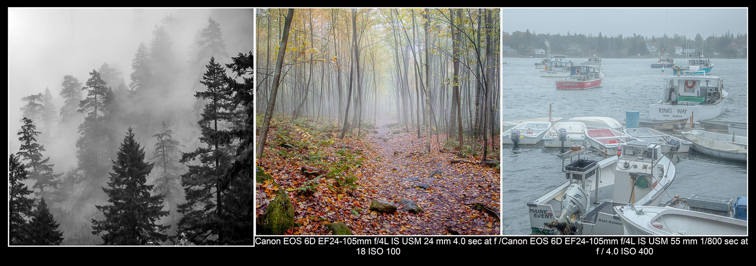 Examples of foggy photos.