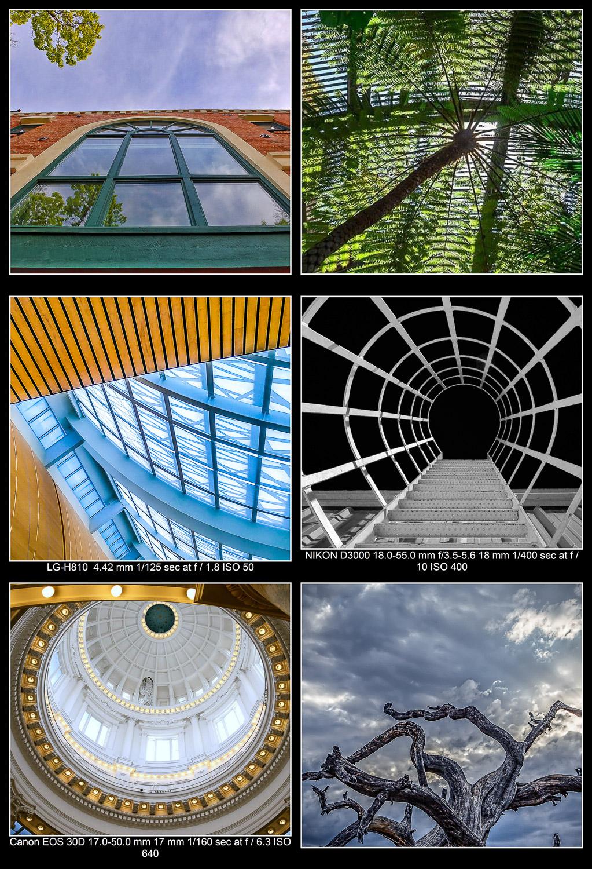 Fotos tiradas olhando para cima
