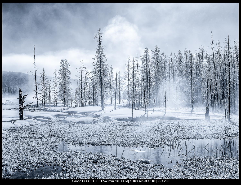 Fotografia de belas artes de paisagens: uma manhã gelada no Parque Nacional de Yellowstone