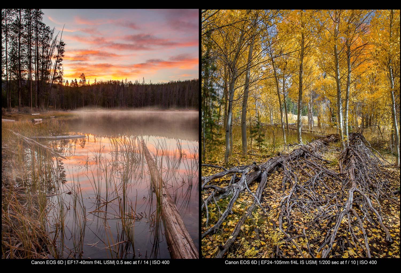 lago enevoado antes do nascer do sol (à esquerda) e uma floresta de álamos no outono (à direita)