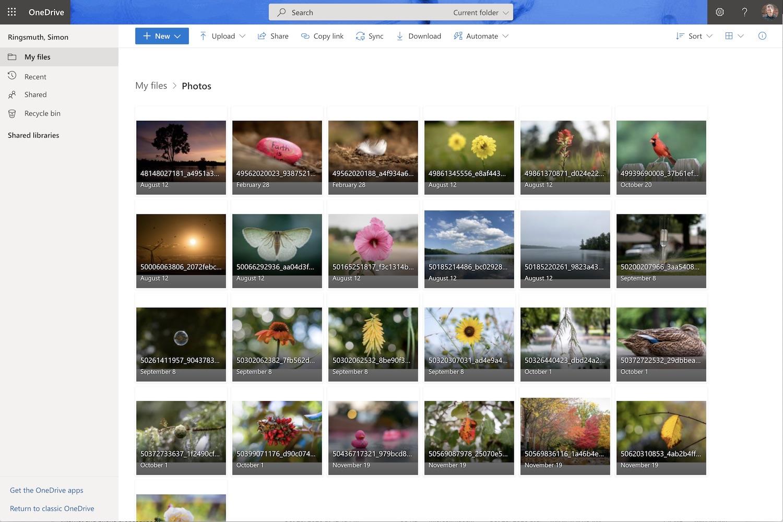 Best Online Photo Storage Microsoft OneDrive