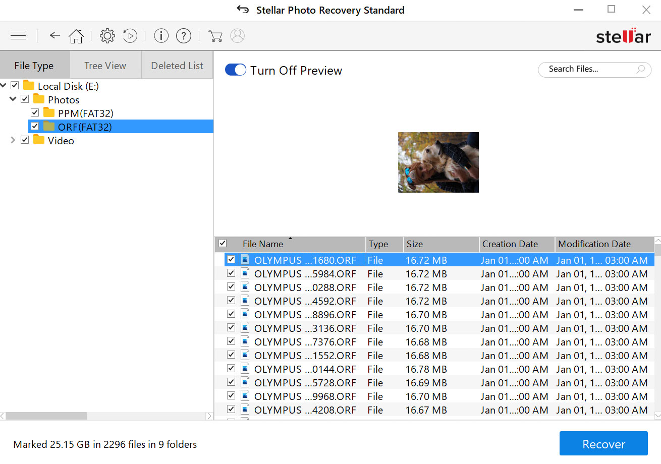Stellar Photo Recovery software review RAW files
