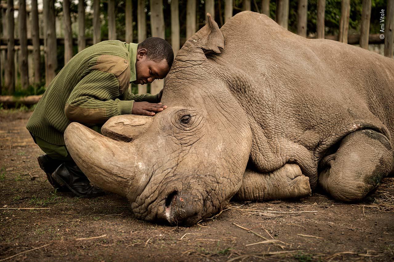 Ami Vitale / Wildlife Photographer of the Year