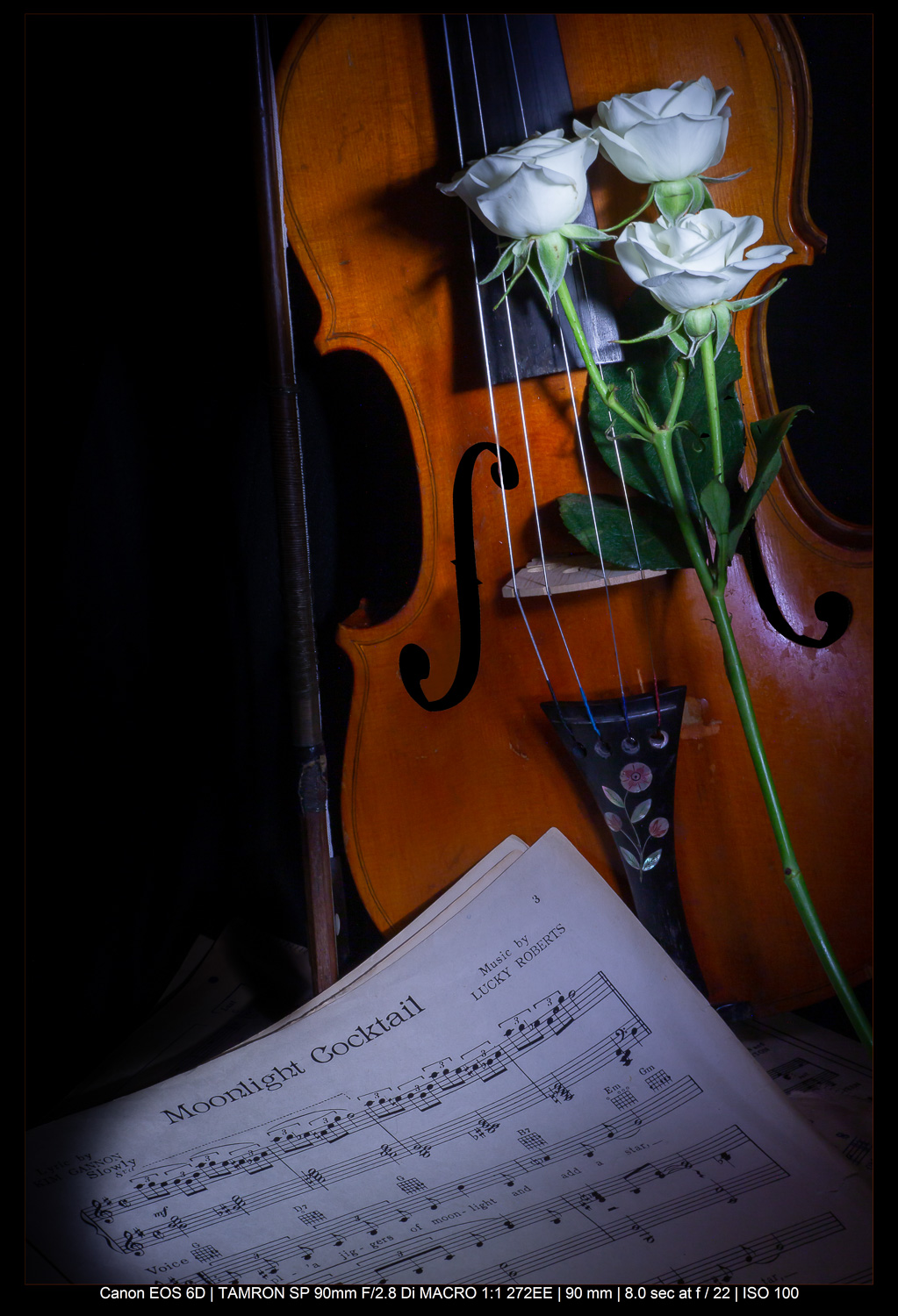 violin, music, and flower still life