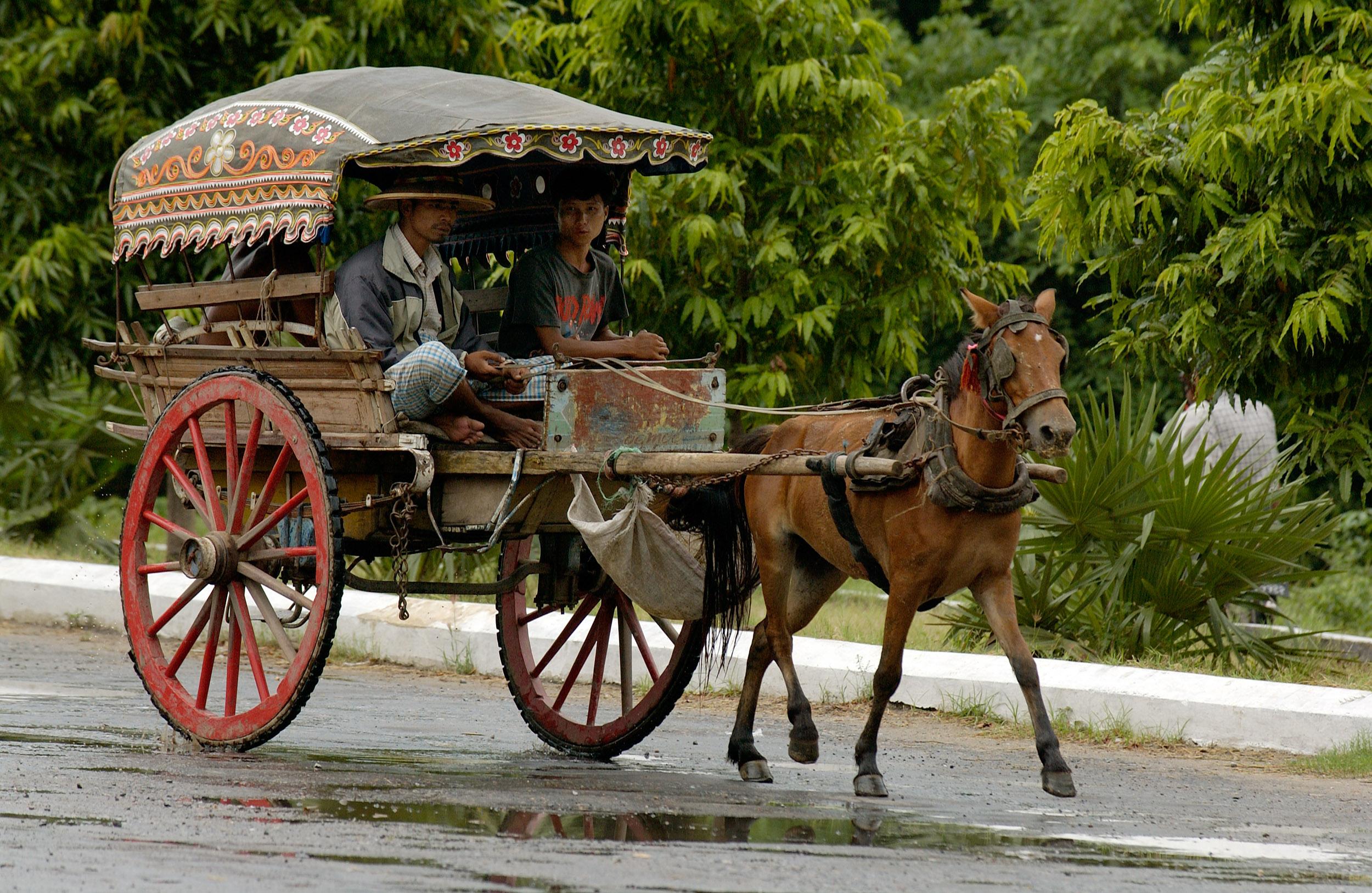 © Kevin Landwer-Johan. Cavalo e carroça