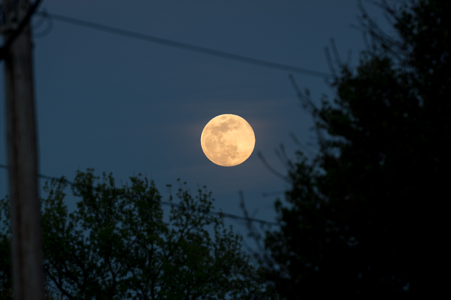 Full Moon with Power Lines in Foreground