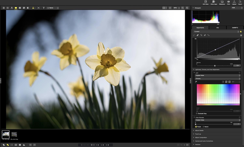 Nikon NX Studio Review Overview