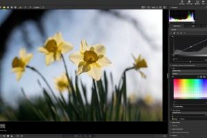 Nikon NX Studio Review: How Good Is This Free Photo Editor?