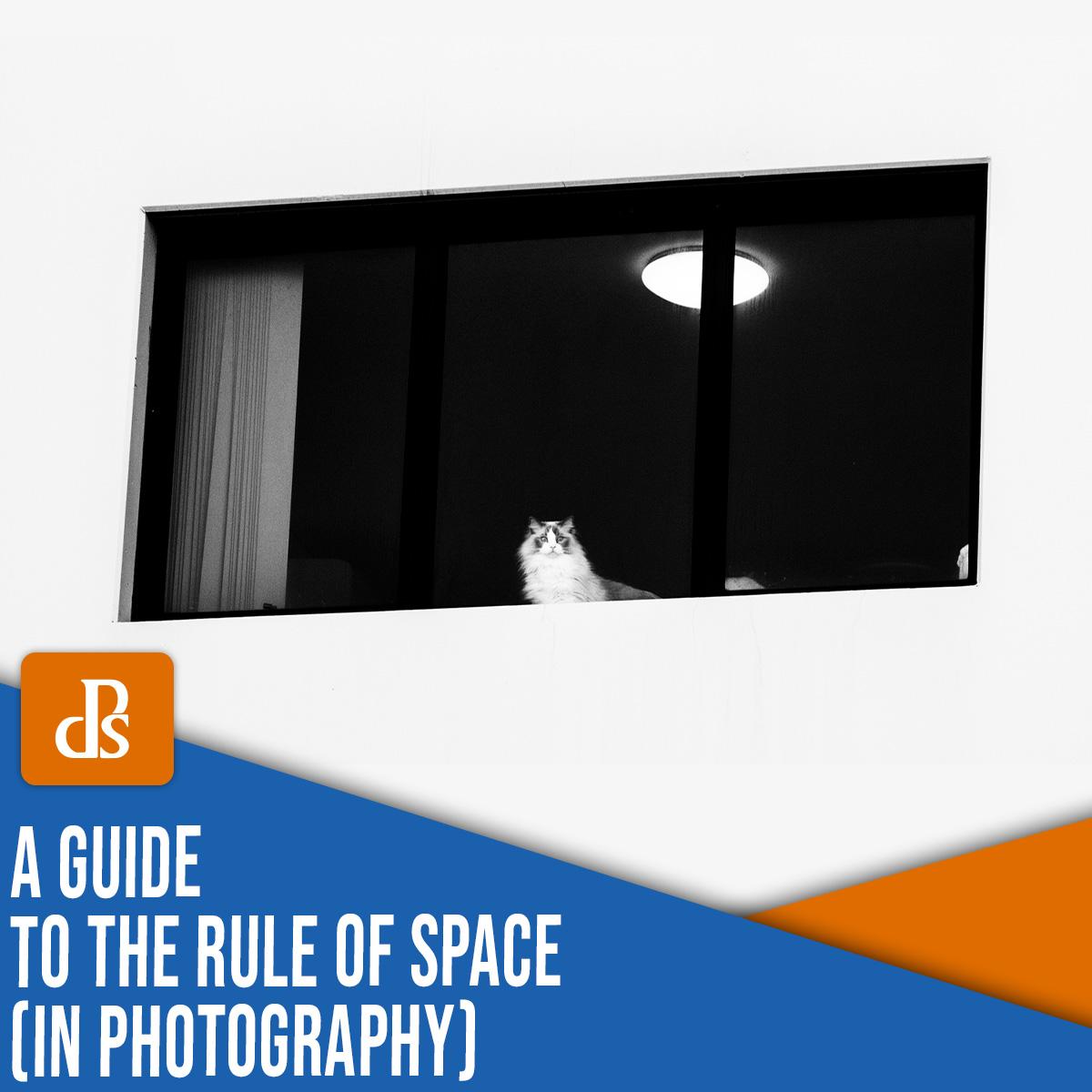 regra do espaço na fotografia: um guia completo (+ exemplos)