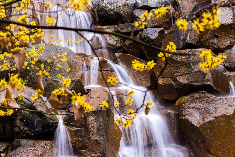 landscape photography tripod