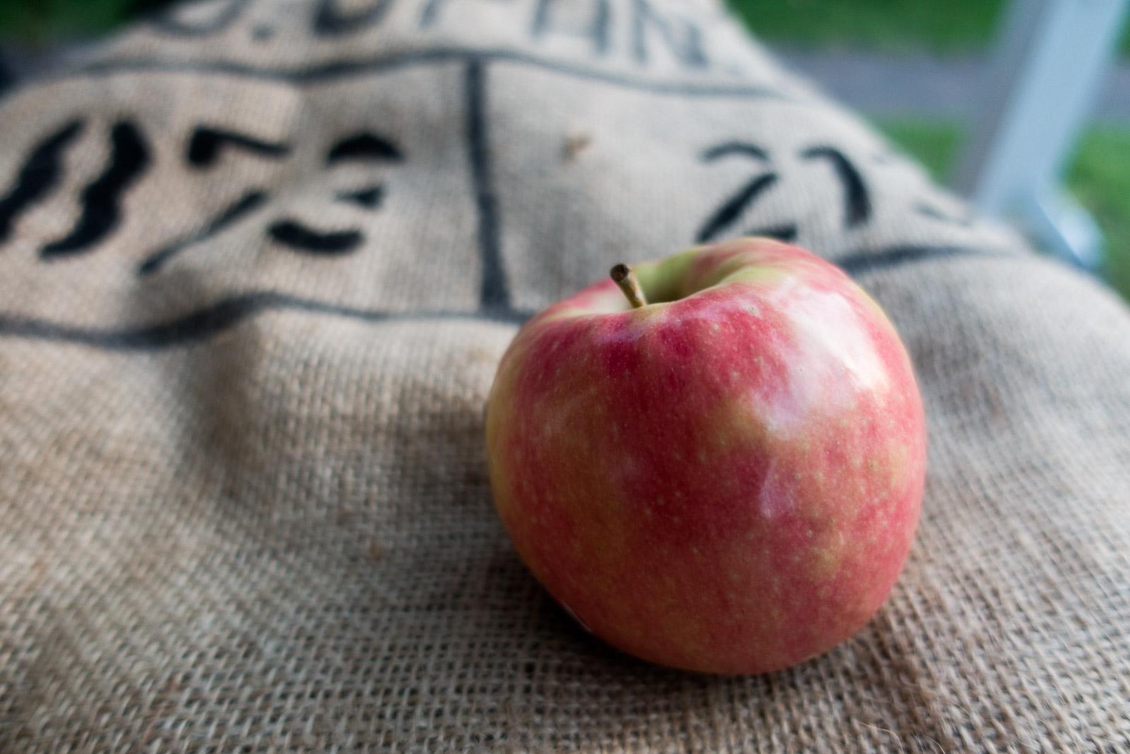 Uma maçã em um saco de estopa