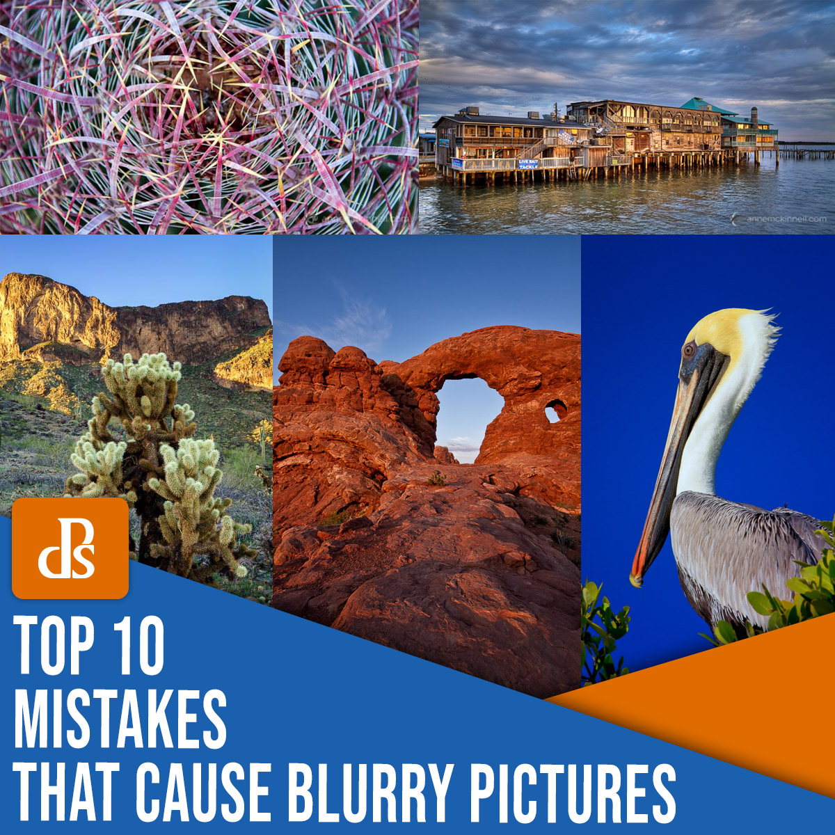 Top 10 Mistakes That Cause Blurry Pictures (And How to Fix Them)