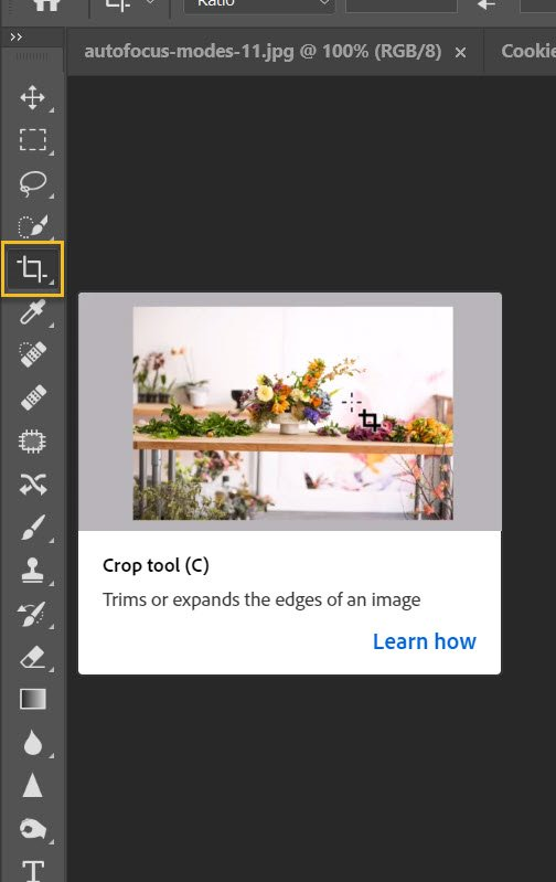 selecting the Crop tool