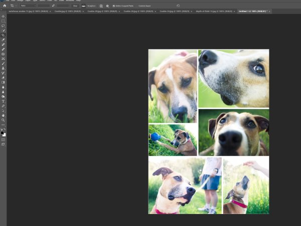 How to Make a Photoshop Collage (in 9 Simple Steps)