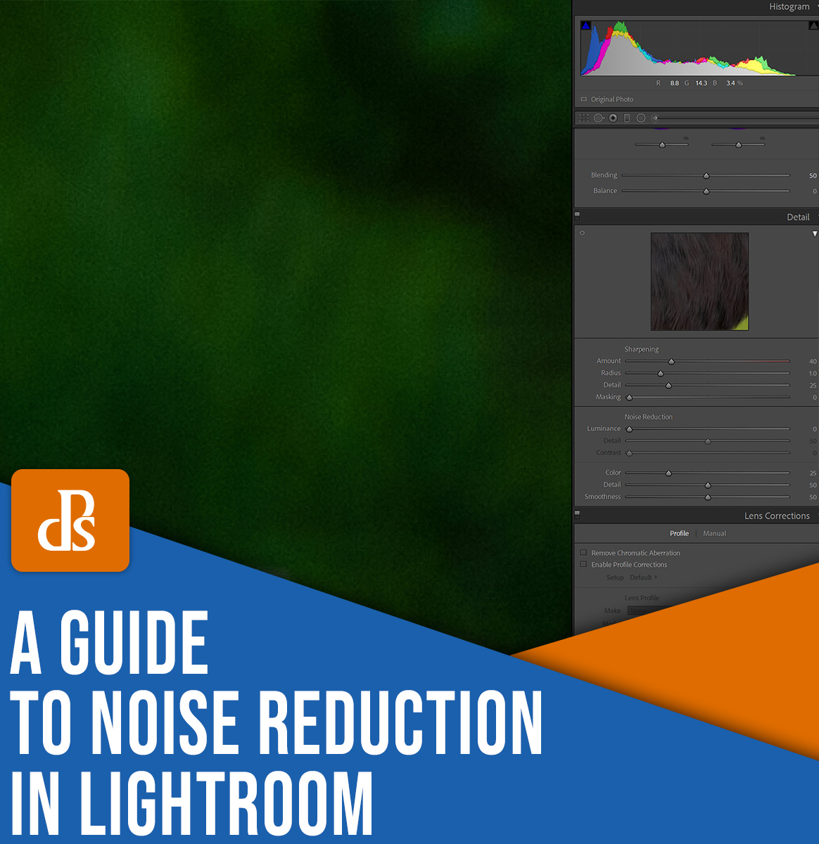A guide to noise reduction in Lightroom