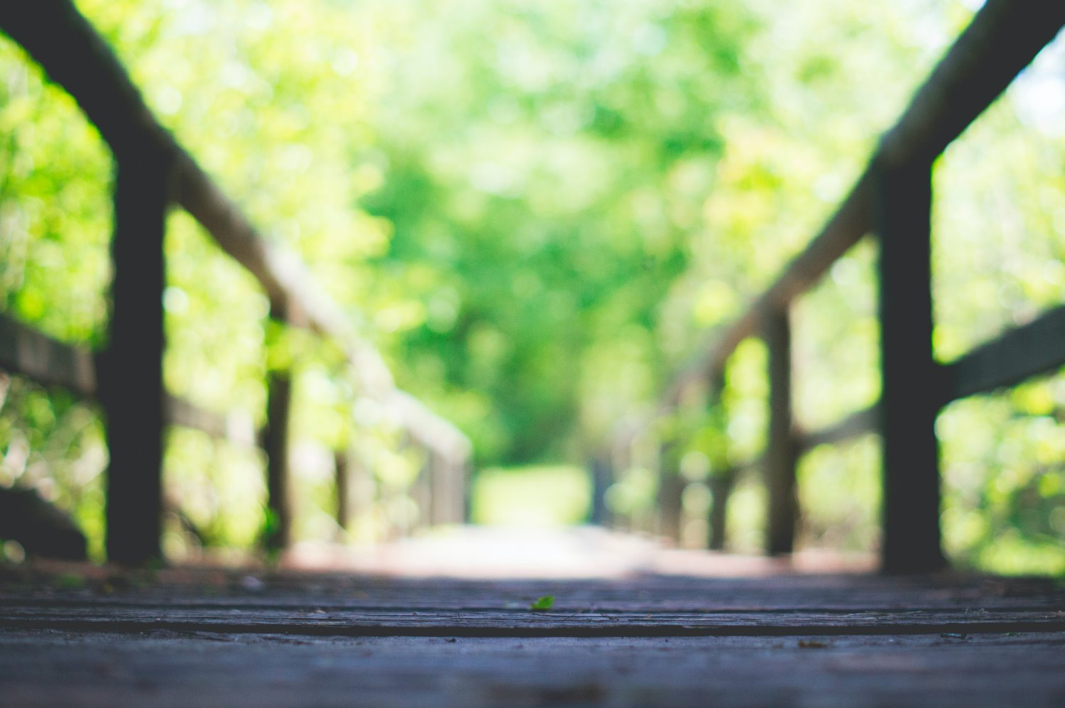 bridge stretching off with a shallow depth of field