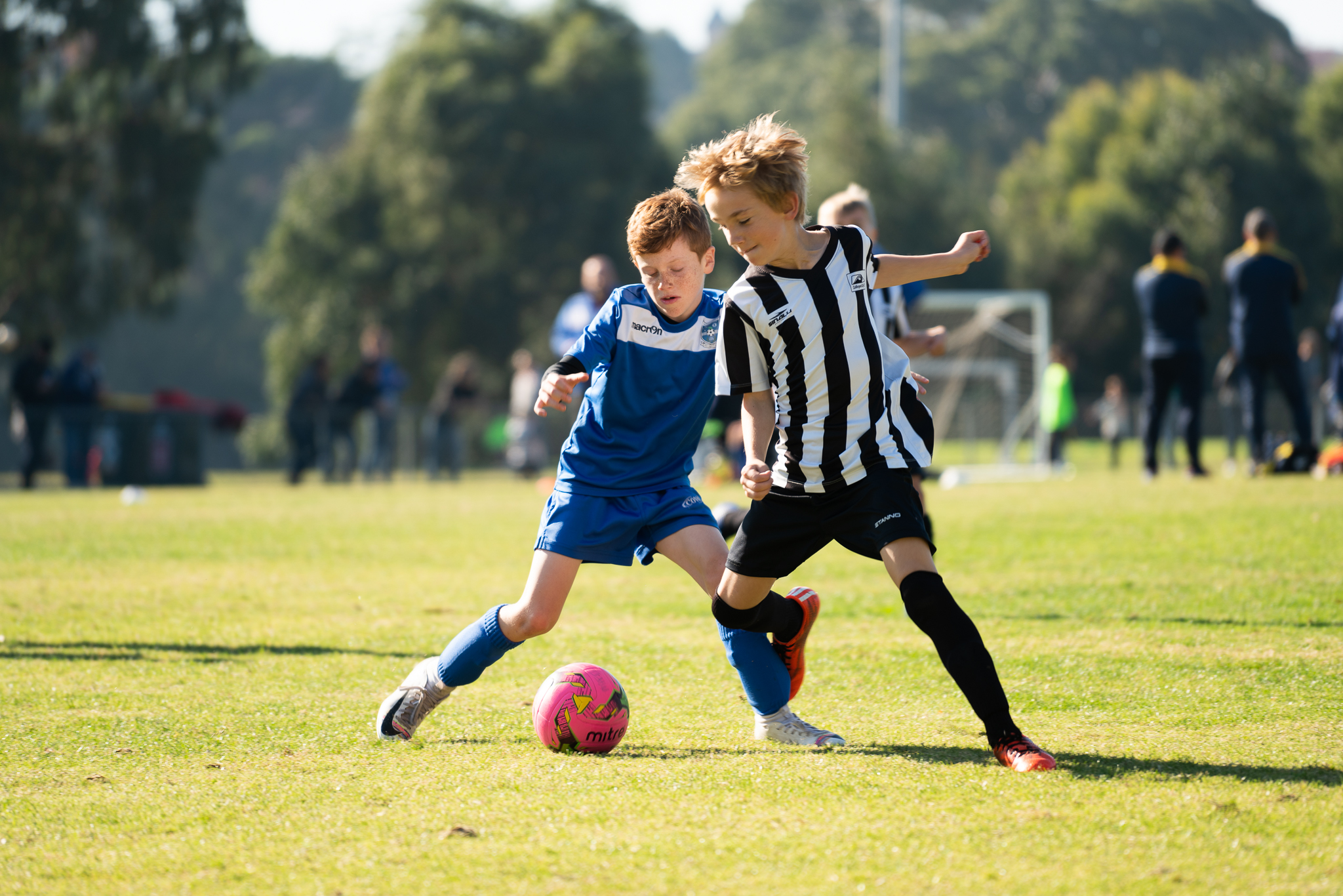 The Weekly Photography Challenge – Sports