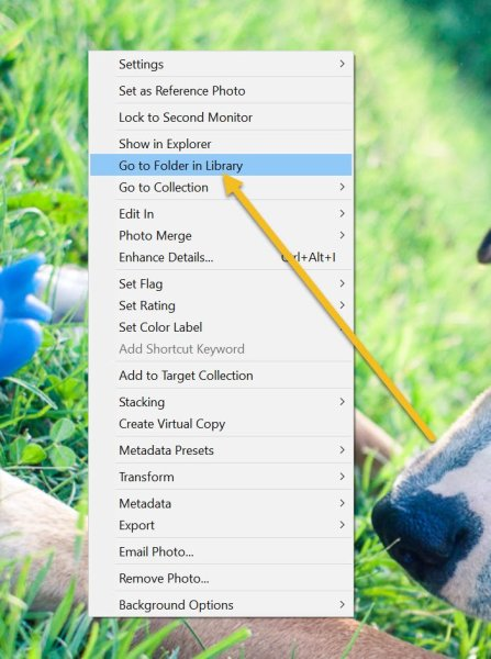 clicking Go to Folder in Library to see where a Lightroom photo is stored