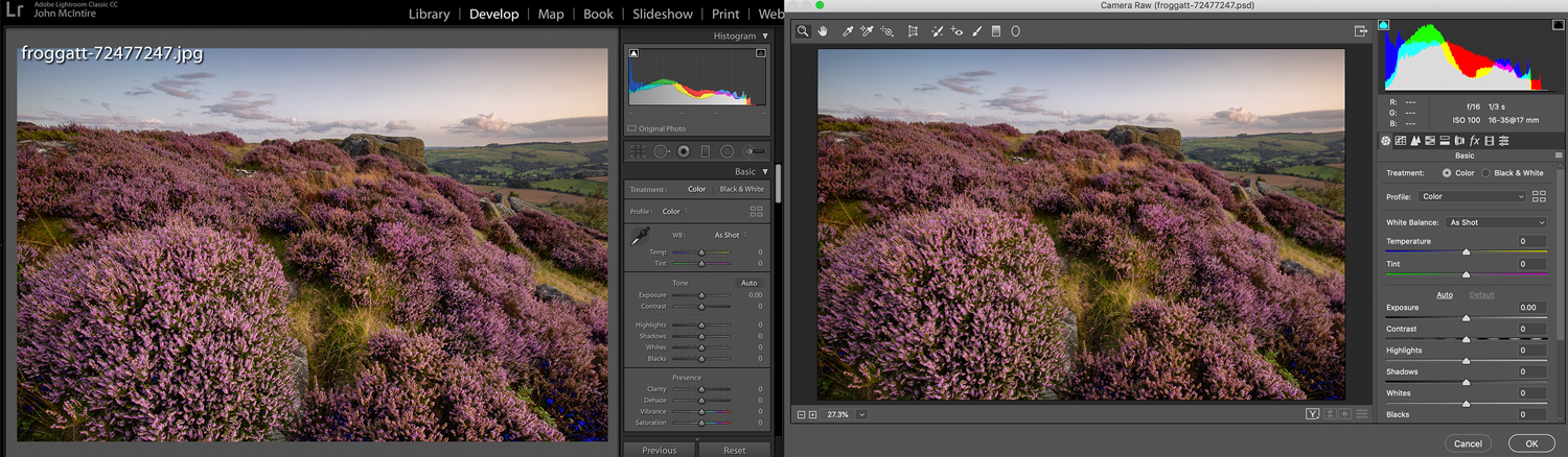 the Camera Raw filter in Photoshop
