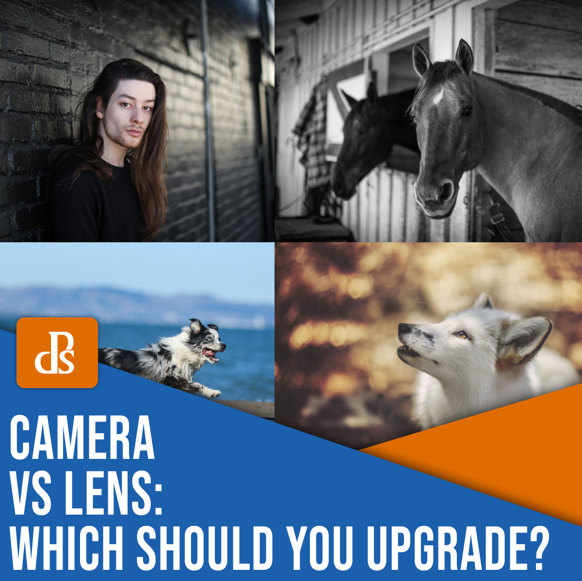 camera vs lens: which should you upgrade?