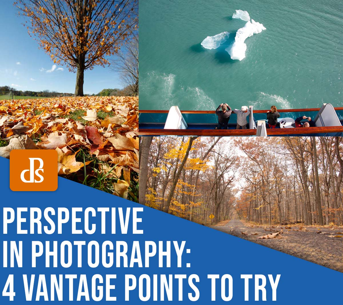 perspective in photography: 4 different vantage points to try