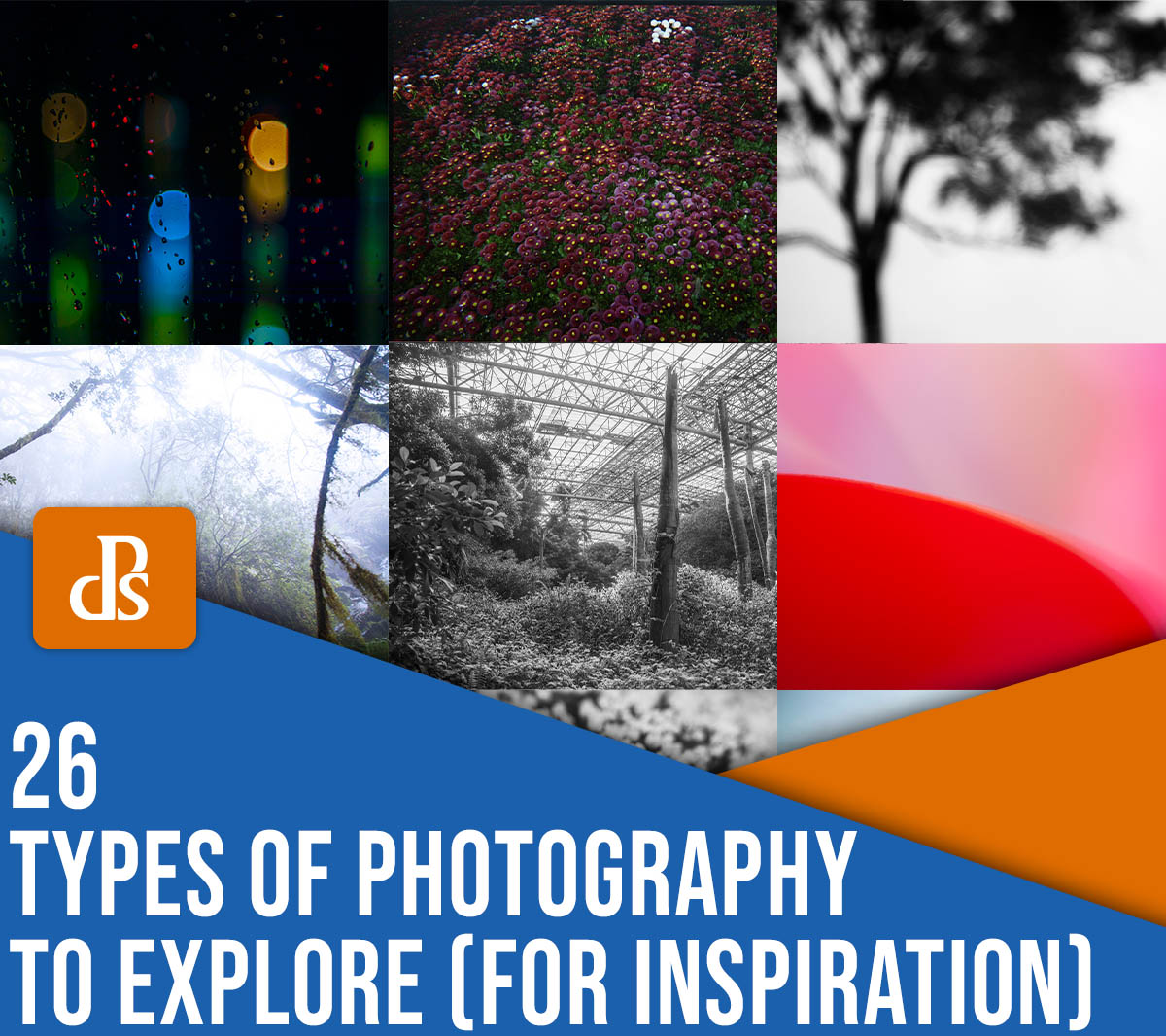 26 types of photography to explore (for inspiration)