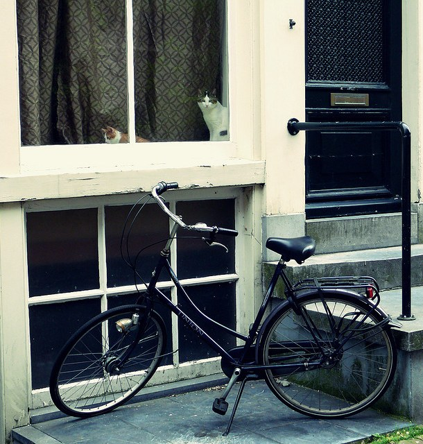 Image: By Kat… – quadruple whammy! Door, window, bike and cats! WOW!
