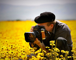 Patience and Photography