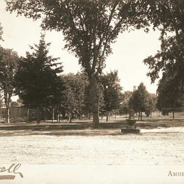 "Lovell, John L., 1825-1903, ""Amherst Town Common,"" Digital Amherst, accessed July 19, 2017, http://www.digitalamherst.org/items/show/486."