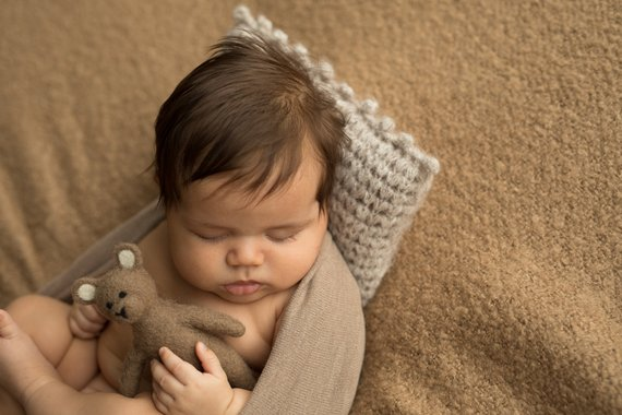 27.newborn Felt Toys 4