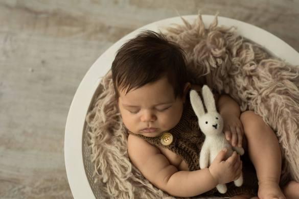 27.newborn Felt Toys 2