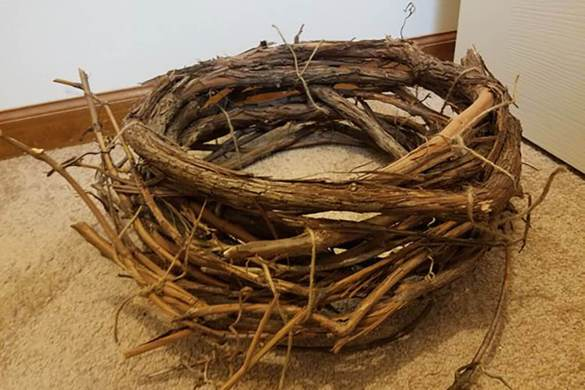 85. Newborn Real Wood Nest 2 Prop