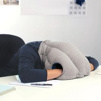 Your airplane neck pillow has nothing on this. | Sample ...