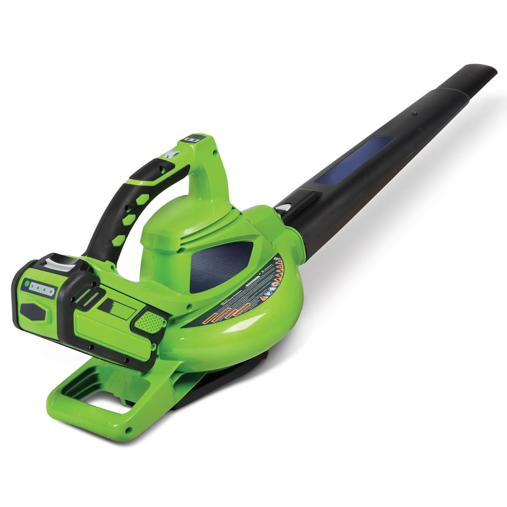 Best Battery Leaf Blower