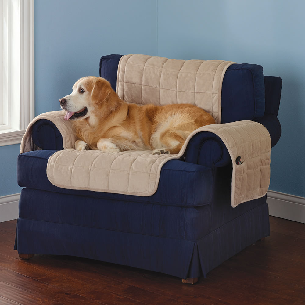 sofa coverings dogs big sectional the non slip furniture protecting pet covers hammacher schlemmer cement chair cover with dog