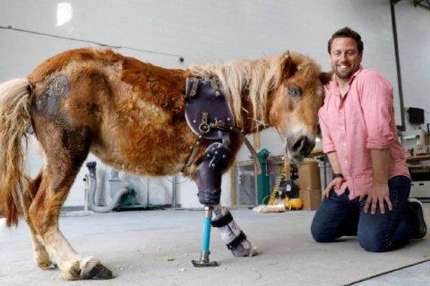 Derrick Campana fabrica prótesis para ayudar a caminar a los animales