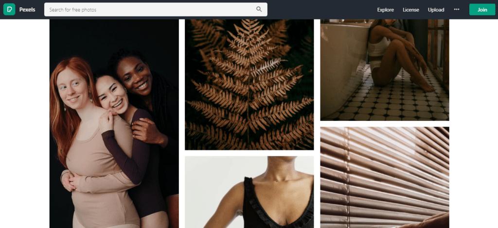 pexels-best-stock-photo-site