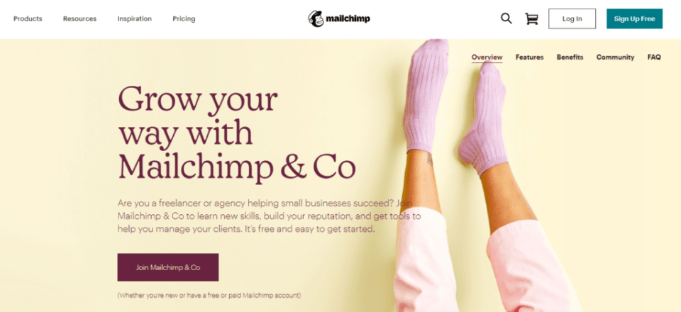 mailchimp-and-co