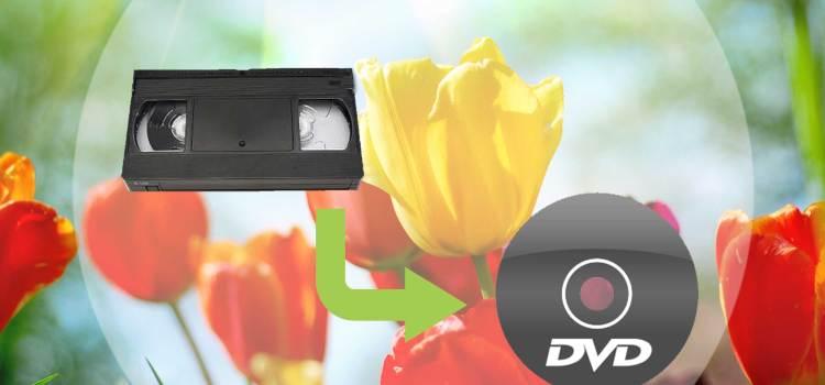 VHS to DVD Regina