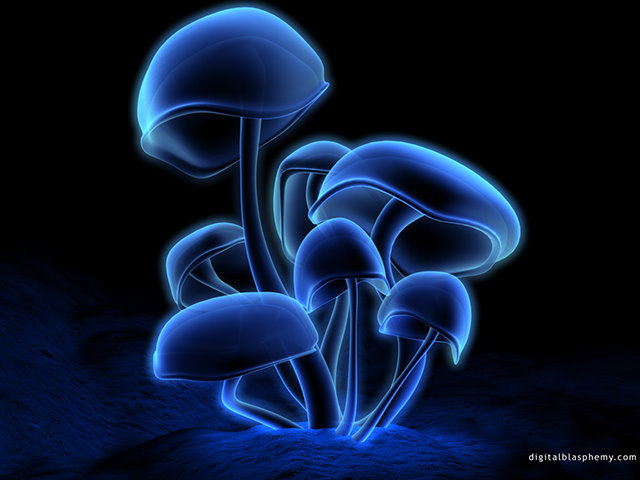 Image result for glowing mushrooms digital blasphemy