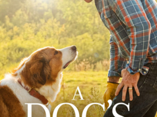 A DOG'S JOURNEY HD GOOGLE PLAY DIGITAL COPY MOVIE CODE (DIRECT IN TO GOOGLE PLAY) CANADA