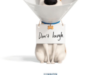 SECRET LIFE OF PETS 2 HD GOOGLE PLAY DIGITAL COPY MOVIE CODE (DIRECT IN TO GOOGLE PLAY) CANADA