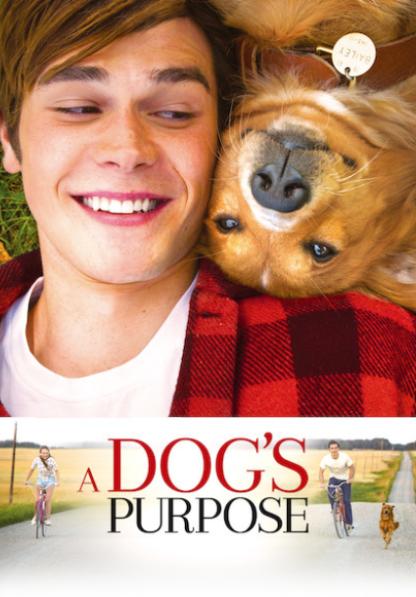 A DOG'S PURPOSE HD iTunes DIGITAL COPY MOVIE CODE (DIRECT IN TO ITUNES) USA CANADA