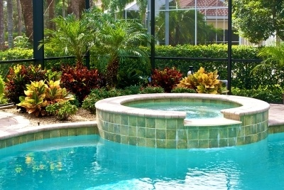 A glistening blue swimming pool with a hot tub above, there is lots of vegetation and greenery surrounding the pool