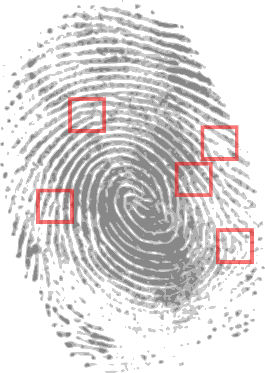 An image of a fingerprint on a white background with small red squares around it