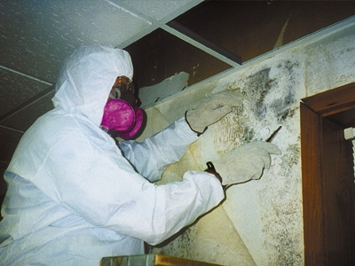 A mold remediation contractor wearing a protective suite and mask removing mold from inside a wall