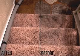 A before and after of a carpet cleaning. The IICRC regulates carpet cleaning and other areas of cleaning and restoration