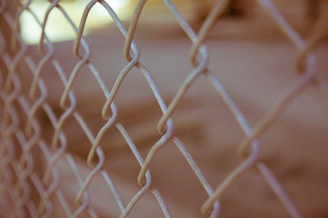 a chainlink fence. To charge over $500 for fencing services, you must have the fence license