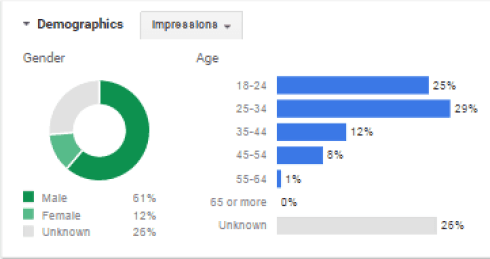 Google Display Network Demographics DigitalDefynd